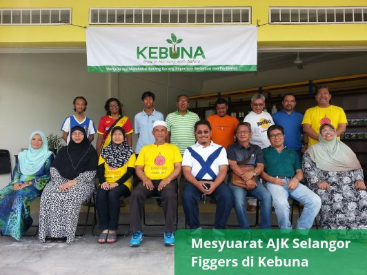 Mesyuarat AJK Selangor Figgers di Kebuna (1)