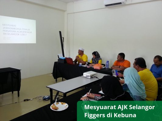 Mesyuarat AJK Selangor Figgers di Kebuna (2)